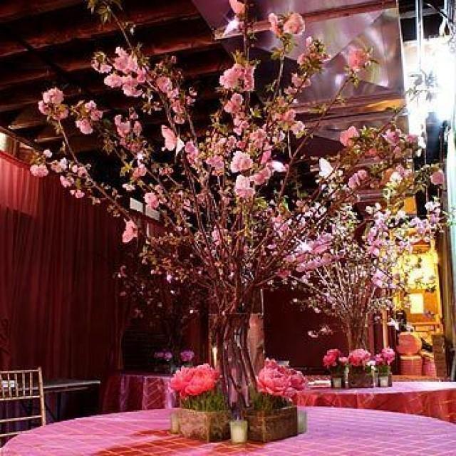 Cherry Blossoms Wedding - Cherry Blossom Wedding... #2060375 ...