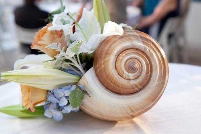 Beach Themes Wedding: Beach Themed Wedding Ideas #2072472