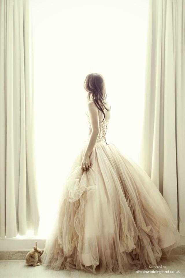 wedding photo - Wedding Dreams