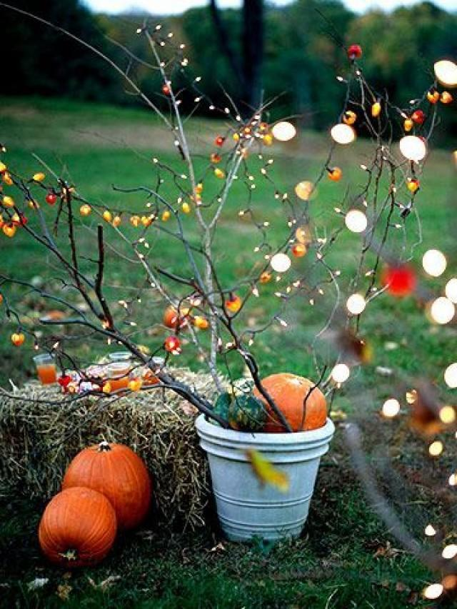 Autumn wedding fall outdoor decorating 2138425 weddbook for Autumn party decoration ideas