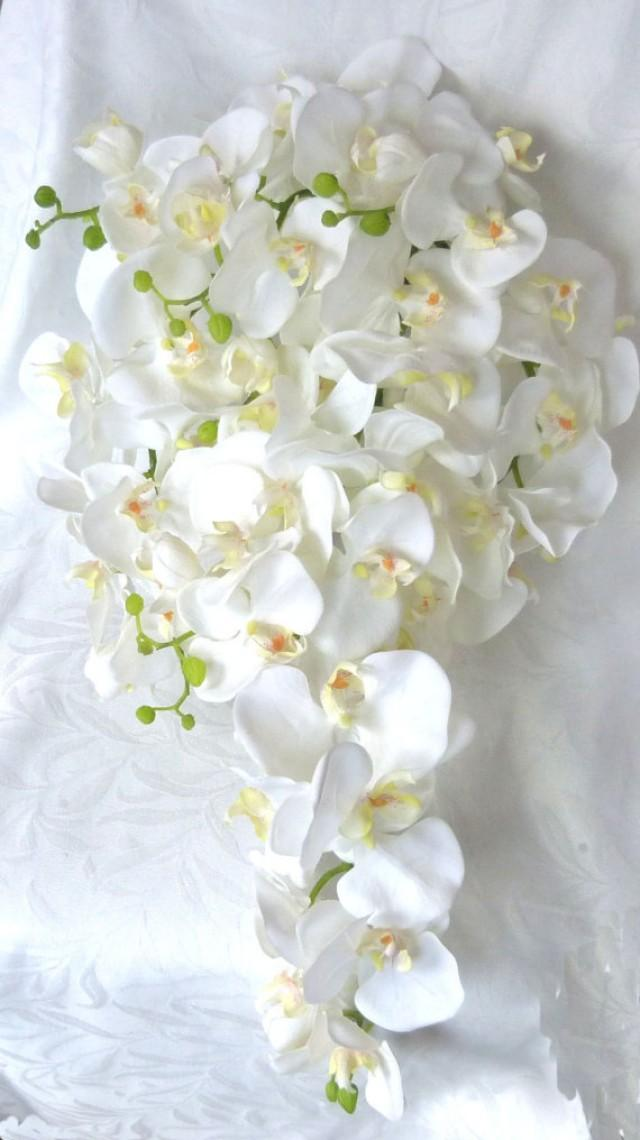 Cascading White Orchid Bouquet Boutonniere Phalaenopsis