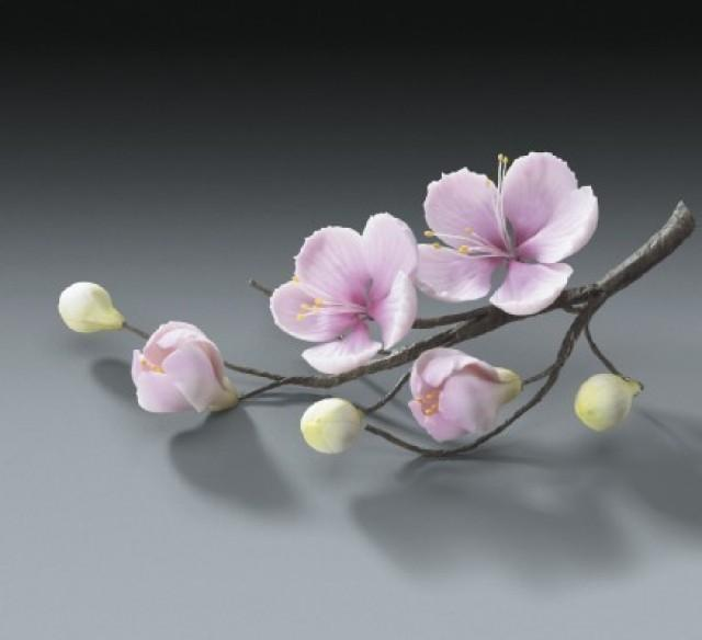 cherry blossom flower branches for weddings and cake decorating