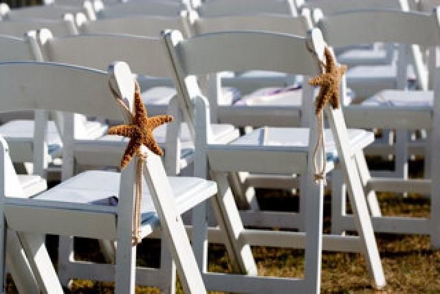 """Brown Chairs Outdoor Ceremony Decorations: Starfish Chair Decoration 6""""-8"""" Brown Or"""
