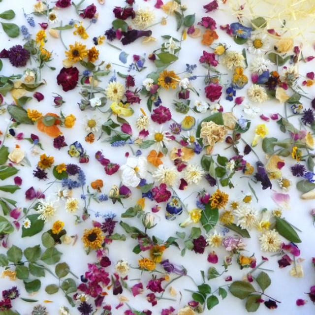 Petal Confetti Wedding Confetti Dried Flowers
