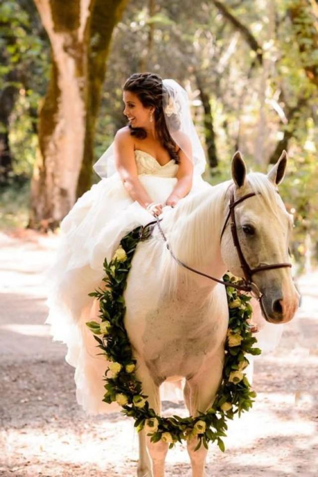 pets wedding animals 2257587 weddbook