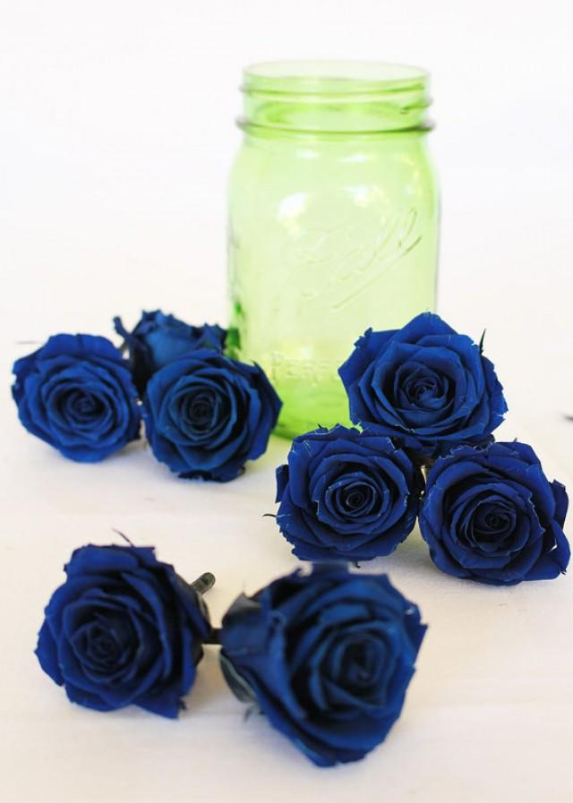 Preserved Natural Lovely Princess Roses, Dark Blue Roses ...
