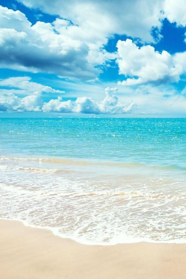 Whitehaven beach ocean swim