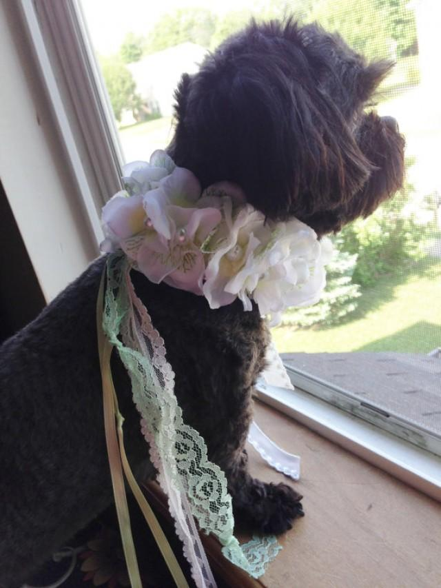 dog collar pet wedding ties on dog wedding pet corsage dog flower