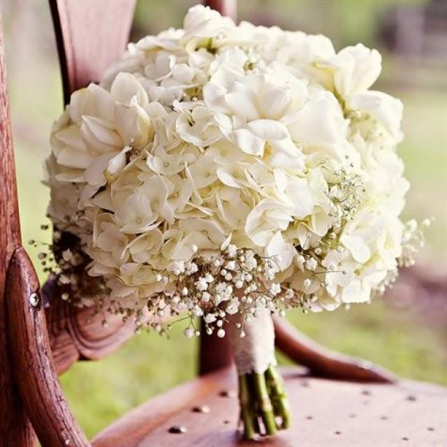 Wedding White Hydrangea: White Hydrangea Bridal Bouquet #2369043