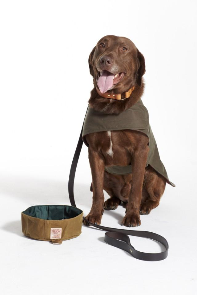 barbour pet accessories