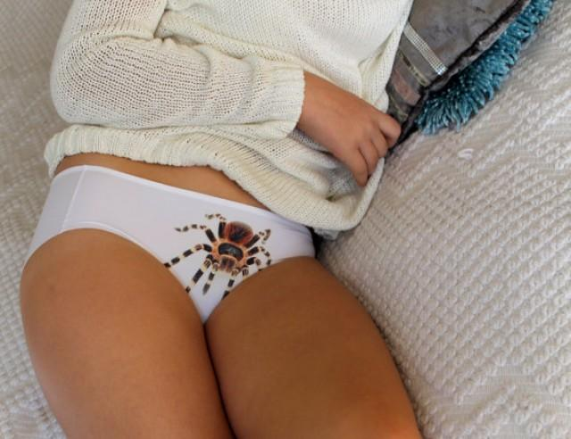 wedding photo - Women's Panties, Tarantula Underwear, Tarantula Design Christmas gift, Bridesmaids gift, Gift for her