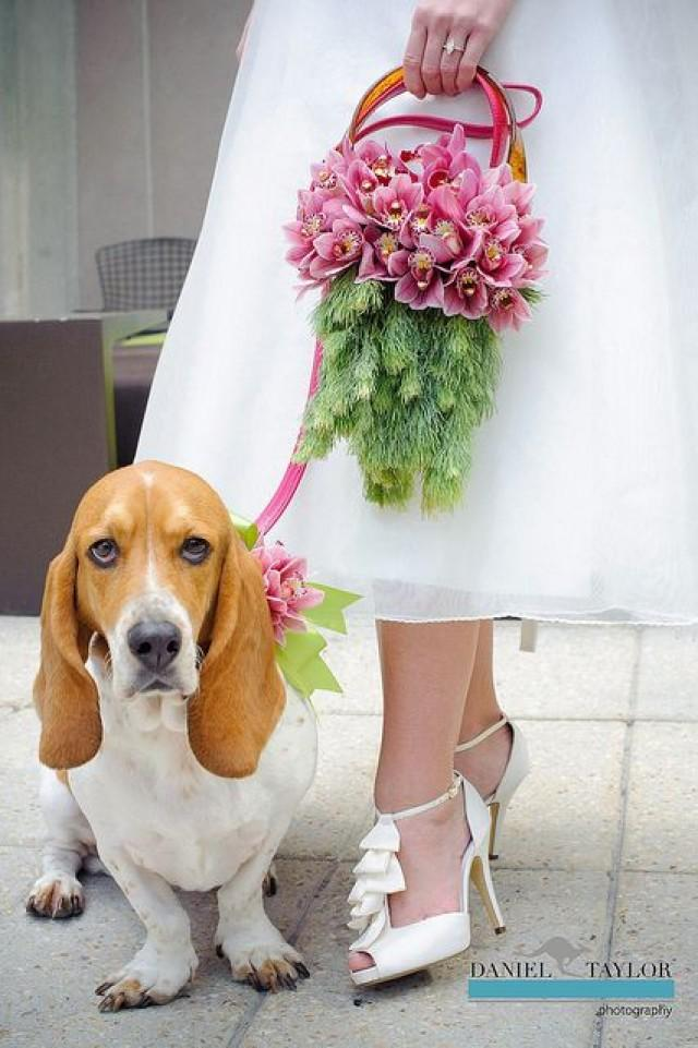 wedding photo - Wedding 2013