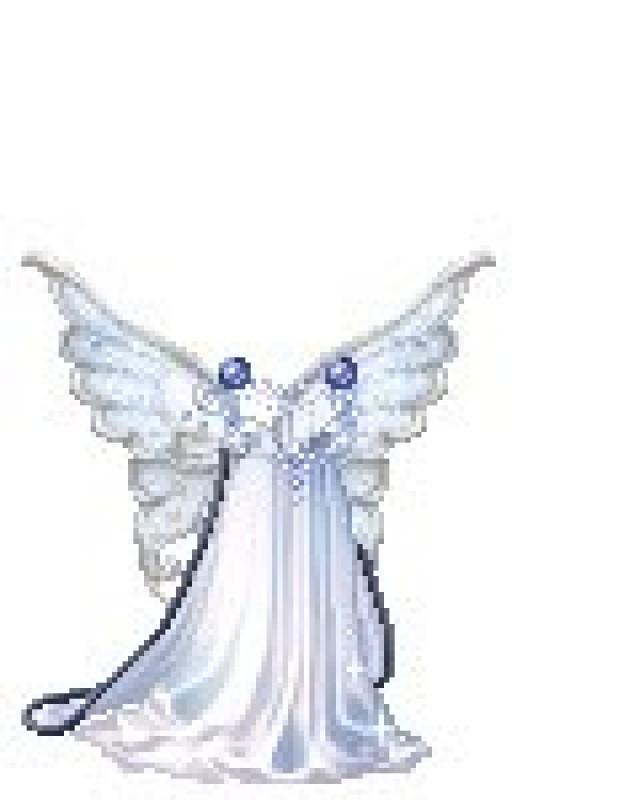 Wedding photo 2526074 weddbook for Trisha yearwood wedding dress