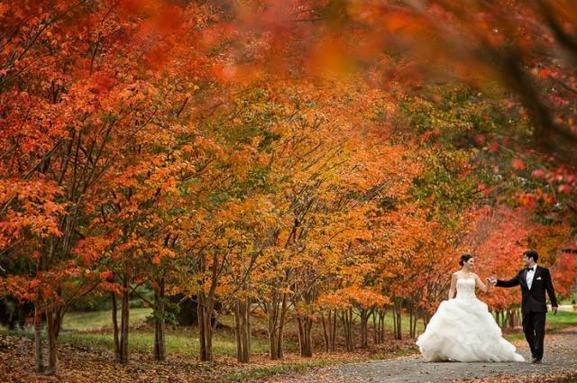 Osz kim wedding