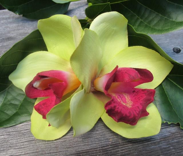 wedding photo - Hawaiian Lime Green and Wine  Two Orchids hair flower clip - Weddings -