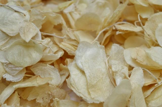 wedding photo - Ivory Petal Confetti, wedding confetti, Cream Petals,  Petals for baskets,  Petals for cones