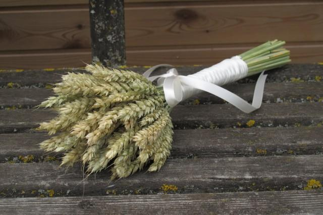 Simple wheat bouquet - dried wheat - bridesmaid bouquet - dried grains -  fall - harvest - autumn - ears