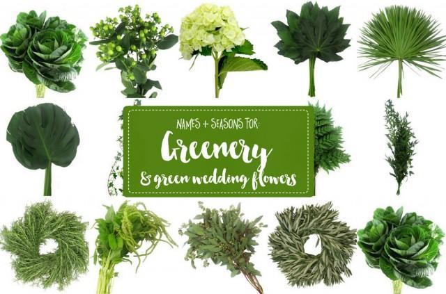 Guide To Greenery For Weddings Green Wedding Flower Names Weddbook