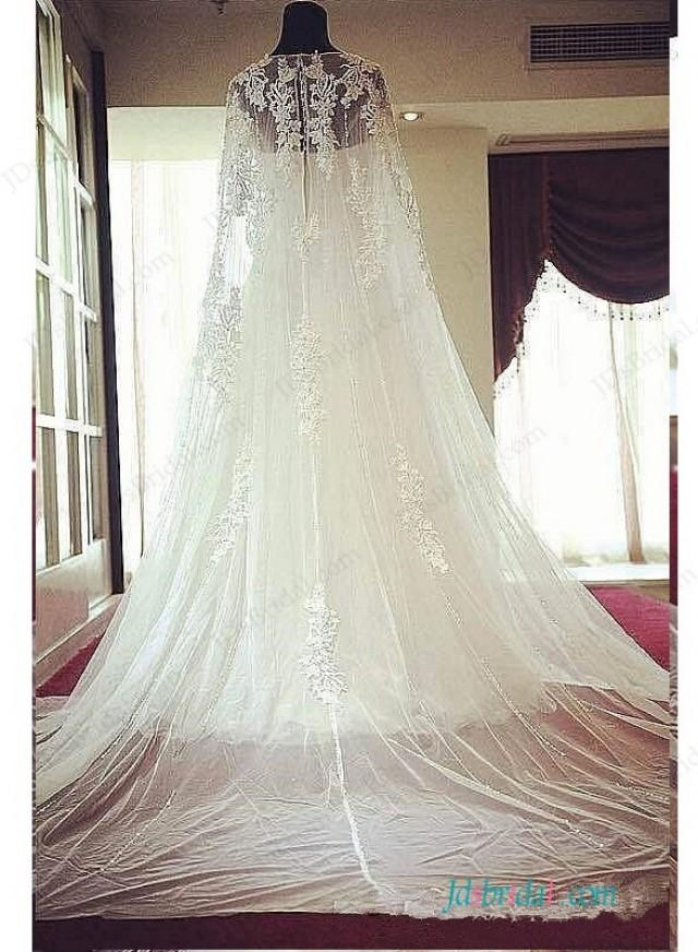 wedding photo - Romance watteau train lace a line tulle wedding dress