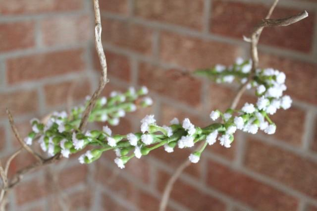 babies breath crown, baby breath crown, dainty flower crown, flower crown, floral crown, simple flower crown, white flower crown, rustic