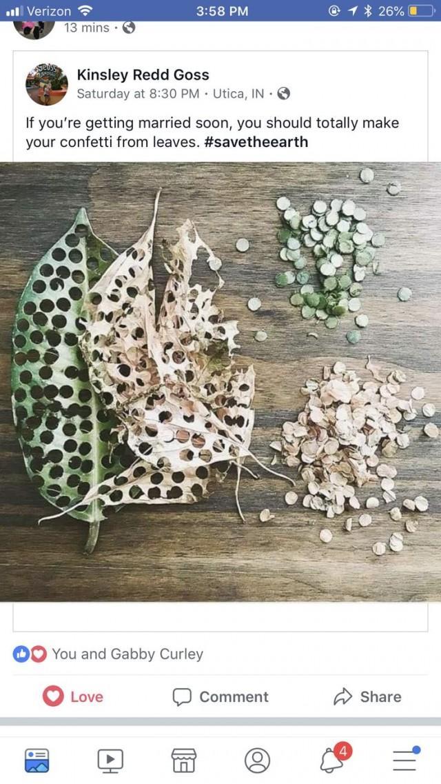 Leaves As Wedding Confetti