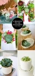 Succulents in your modern wedding