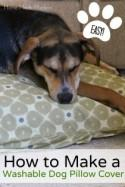Guest Post: How to Make a Dog Bed with Custom Fabric