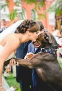 21 Impossibly Adorable Wedding Day Dogs