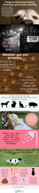 Thinking of Involving a Pet at Your Wedding? Read This First!