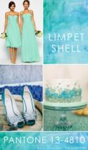 Pantone - Limpet Shell 13-4810