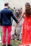 7 disturbing questions we have about these bear officiant photos (that we love anyway)