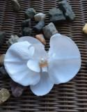 "one piece white silk orchid,4""x3 2/1""Real Touch Artificial Phalaenopsis silk orchid , DIY Wedding"