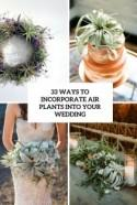 33 Ways To Incorporate Air Plants Into Your Wedding - Weddingomania