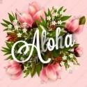 Aloha Luau tropical flowers poster invitation hibiscus pink lily, orchid, plumeria magnolia, palm leaf