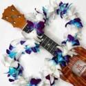 Graduation Hawaiian Lei - White & Dyed Orchid Single Lei