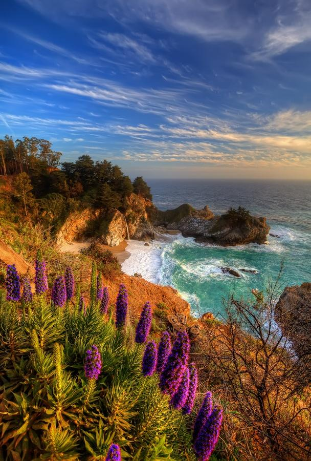 زفاف - Travel Hot Spotsots