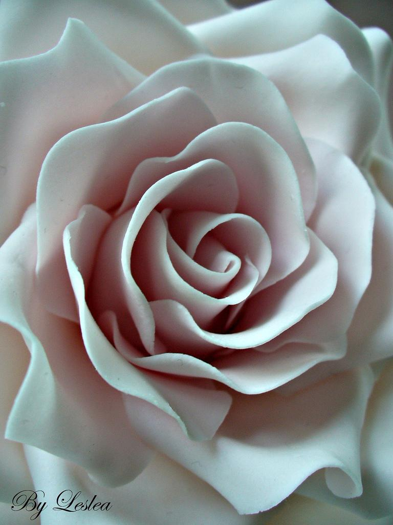 Свадьба - Pink Rose