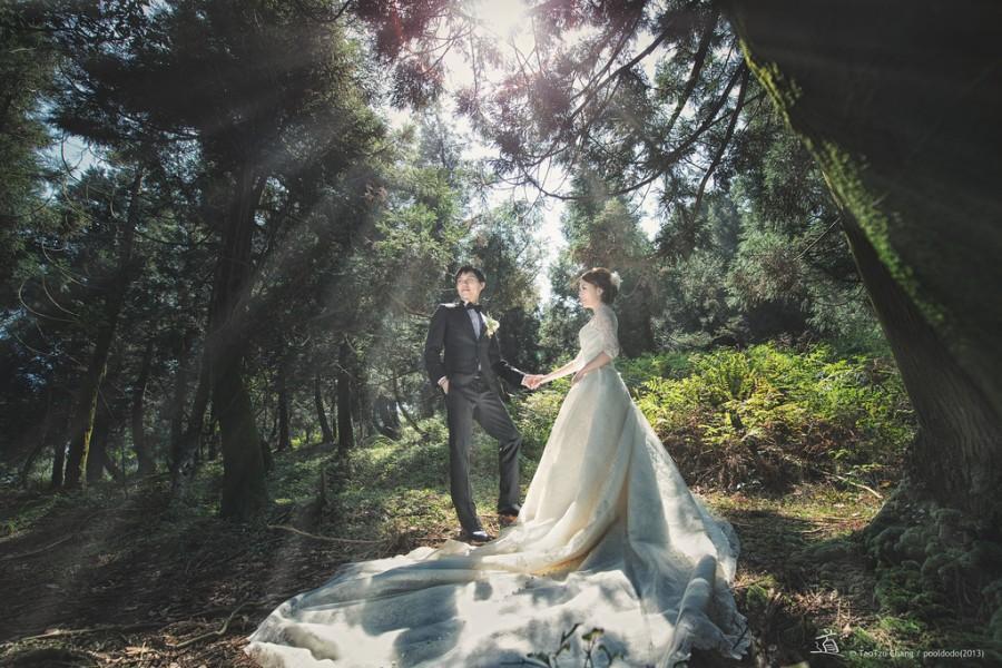 زفاف - [wedding] below the sun light