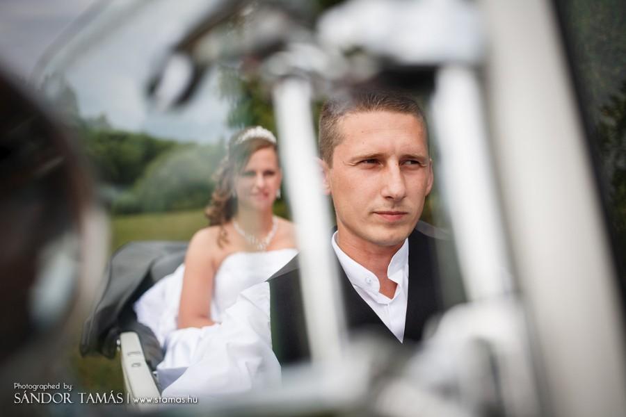 Wedding - Wedding Photo