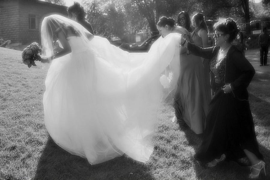 Wedding - Cristinia's Entourage