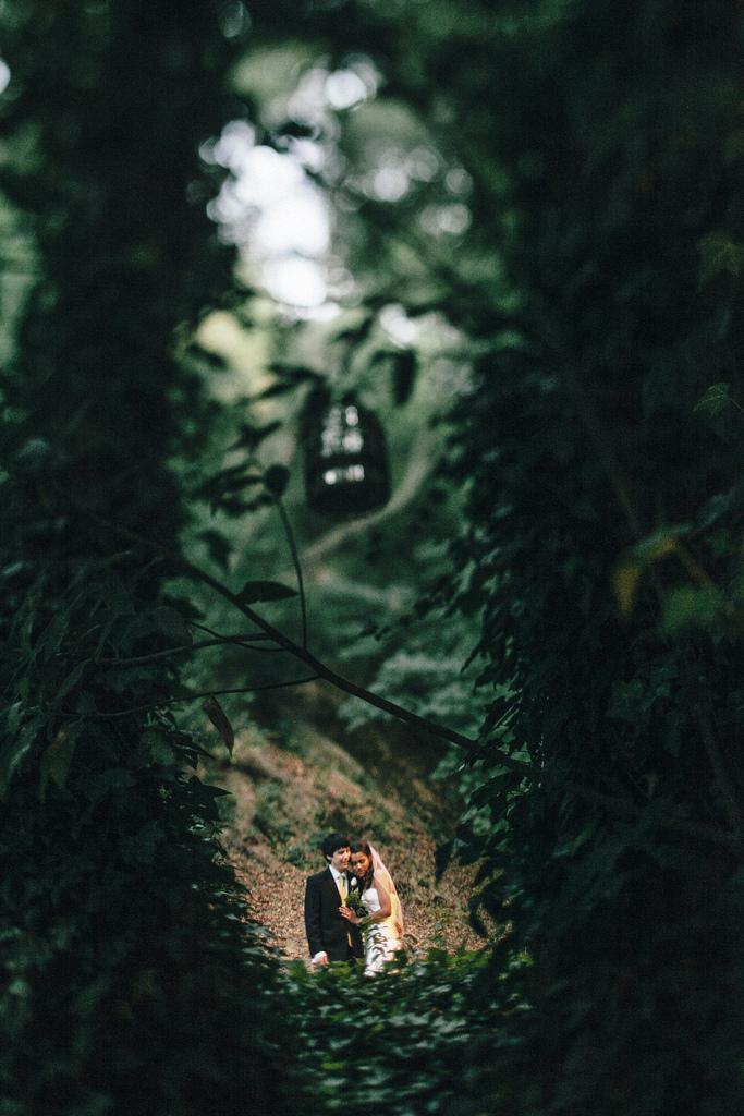 Wedding - Ashlee   Matt