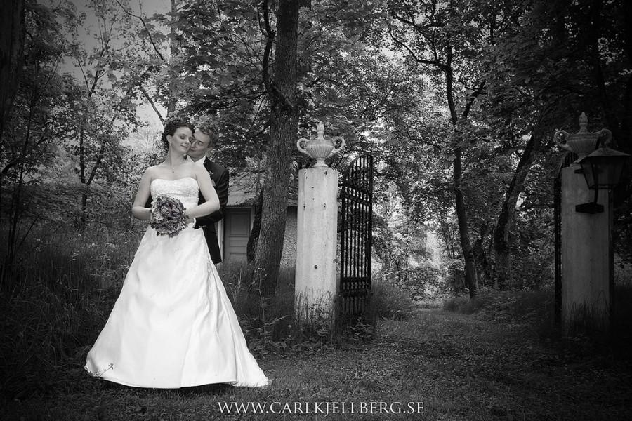 زفاف - Wedding Photography 2013