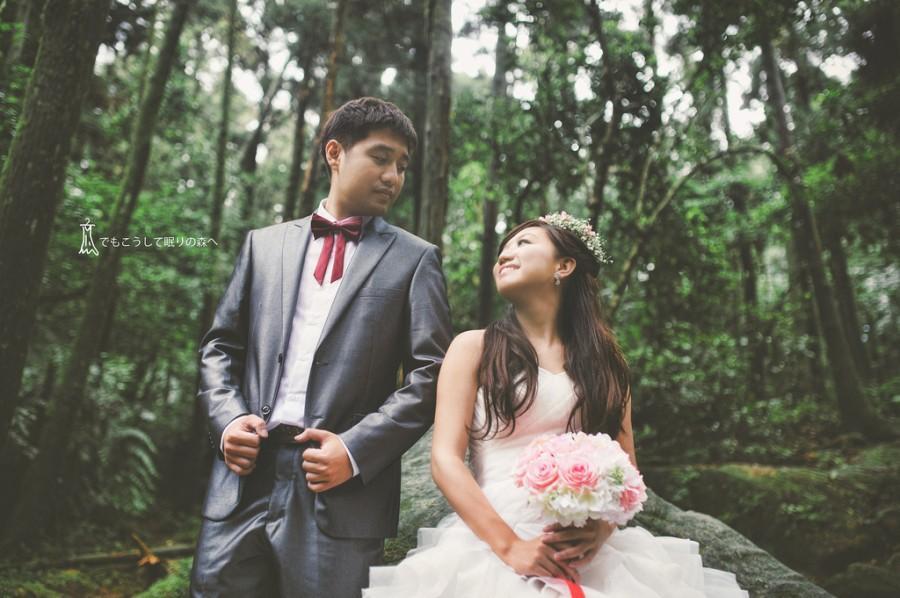 Wedding - [wedding] forest