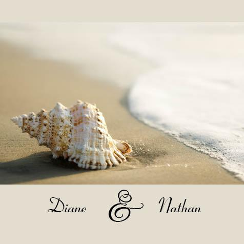 Framed Seashell Beach Square Invitation And Pocket In Taupe