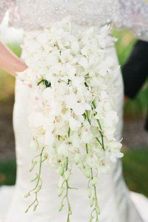 Wedding - White Weddings