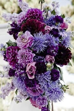 Mariage - Purple Weddings