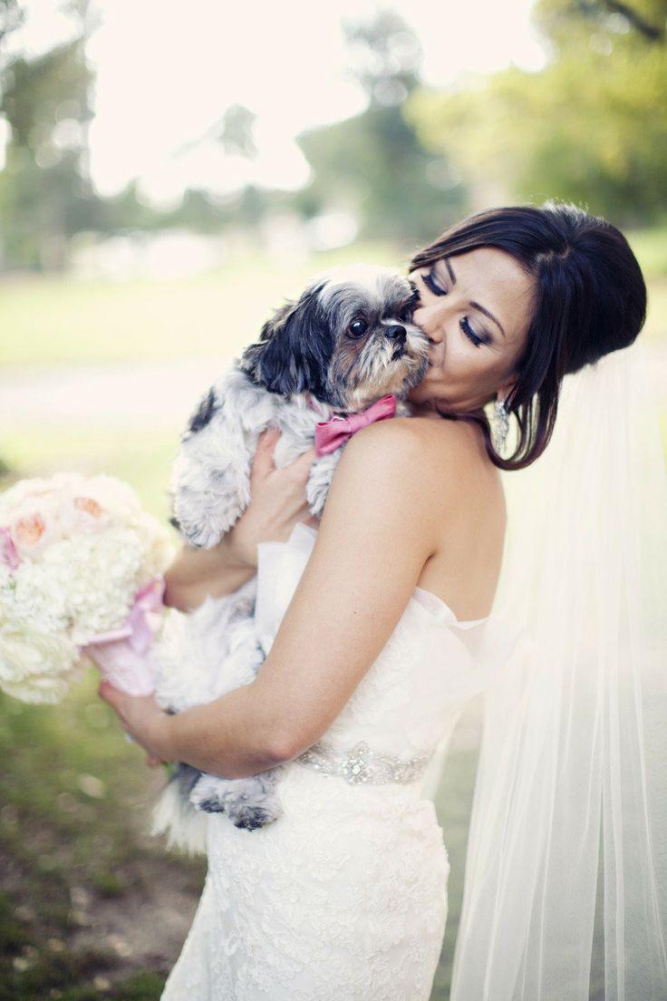 Hochzeit - Pets Of Honor