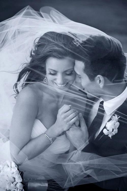 Wedding - * Wedding Photography *