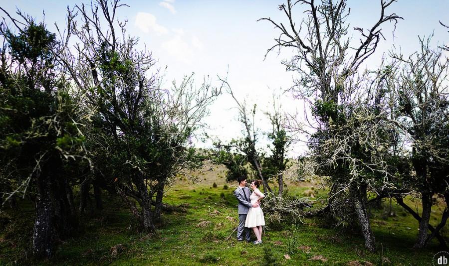 Свадьба - Sionen & Dan