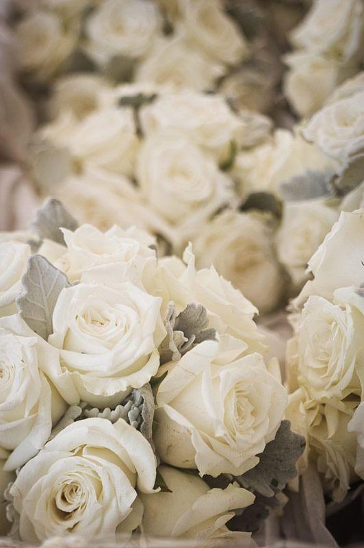 زفاف - Grey/Silver Wedding